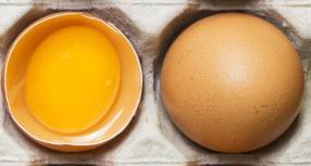 Efek samping makan telur mentah