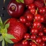 makanan meningkatkan hemoglobin