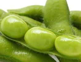 Kandungan vitamin dan gizi, serta Manfaat Kedelai bagi Kesehatan