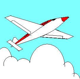 ibu hamil naik pesawat terbang