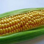 Manfaat jagung manis rebus