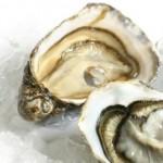 Manfaat tiram bagi kesehatan