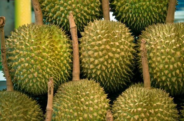 Buah Durian - Tinggi Karbohidrat