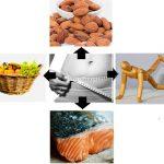 mengapa perut gendut sulit di langsingkan